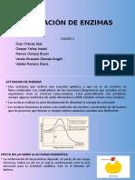 ACTIVACIÓN-DE-ENZIMAS (2)...