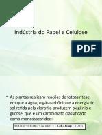 Indústria do Papel e Celulose