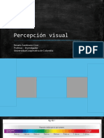 Neurociencia de la Percepción visual