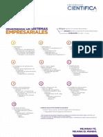 malla_ingenieria_sistemas_empresariales.pdf