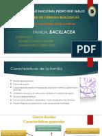 FAMILIA BACILLACEA. PPT