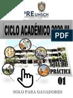 GUIA 01 - 2020 III (2)