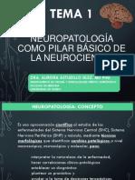 TEMA 1, NEUROPATOLOGÍA, BASES.pdf