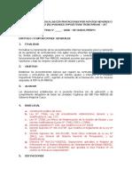 DIRECTIVA MERISS 2020.docx