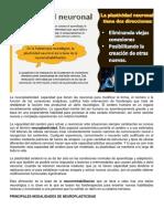 neuro 2.pdf