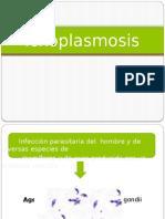 Toxoplasmosis.
