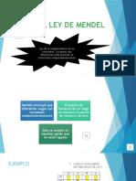 Tercera ley de Mendel.pptx