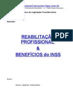 Prev-InSS ReabProfissional Beneficios Paulo