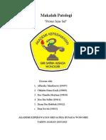 makalah Proses Jejas Sel kel.2 (BU KRIS)-1