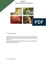 PPT Entomologi