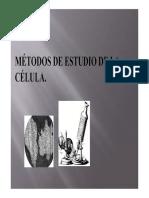 Métodos de estudio (II)