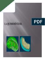 Quimiosintesis