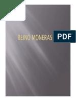 Moneras (I)