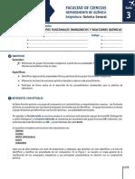 Guía 3. Grupos Funcionales Inorgánicos.pdf