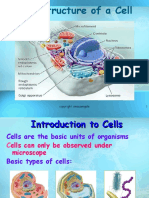 59945_cell structure.ppt