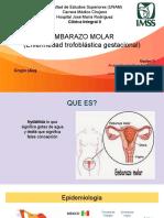 embarazo molar(1).pdf