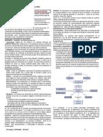 resumen_para_pv_01-2010