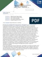 Consolidación en proceso_Fase-3_Grupo161