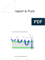 transport AND FLUID.pptx