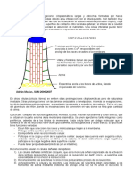 Biología Celular II
