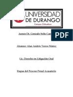 Etapas del Proceso Penal Alan Andres Torres Núñez