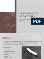 clasificacindelasbacterias-140928012435-phpapp01