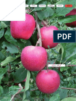 Brosura-Apple-08Melo_GB.pdf
