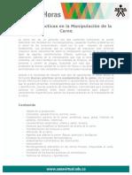buenas_practicas_manipulacion_carne.pdf