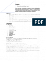 Tola, 2019 - Diseño de Riego Fase I(1).pdf