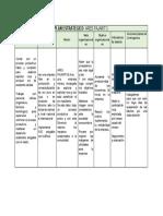 formato plan estrategico ARES PAJARITO