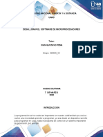paso 2 grupo 309696_55_MICROPROCES.docx
