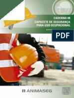 NORMA_ILUSTRADA_DE_CAPACETES_DE_SEGURANCA.pdf
