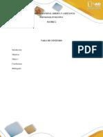 Matriz 2_reflexión inicial_psicologia evolutia