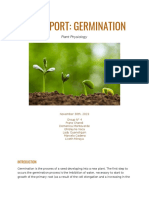 Informe germination
