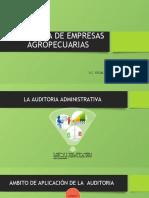AUDITORIA DE EMPRESAS AGROPECUARAS.pptx