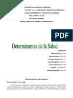 DETERMINANTES DE LA SALUD INFORME