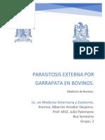 Parasitosis externa por garrapatas