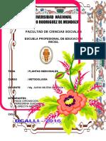 PORTADASS.doc