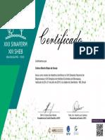 certificado revisor sinaferm 2019