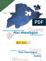 consulta pública PLAN HIDROLÓGICO del DUERO 2011