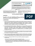 ..ACTA SUSPENSION TEMPORAL SENSOMATIC.pdf