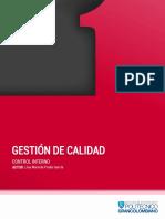 CONTROL INTERNO ACUMULADO.pdf
