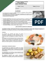 6 BASICO CIENCIAS Guía de nutrientes parte teórica 2020.pdf