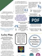 NOTAS EN CLASE SOBRE LA LEY PINA.pdf