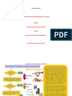 CLASIFICACION DE LAS OBLIGACIONES Y CRUCIGRAMA
