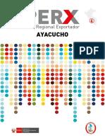 PERX_AYACUCHO.pdf
