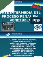 71974768-Proceso-Penal-en-Venezuela.pptx