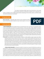 vides.pdf