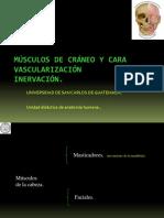 MUSCULOS DE CRANEO Y CARA MODIFICADA.pdf