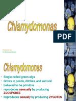 presentation-chlamydomonas.pdf